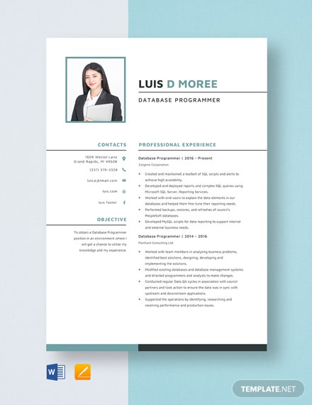 Database Programmer Resume Template