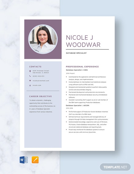 Database Specialist Resume Template