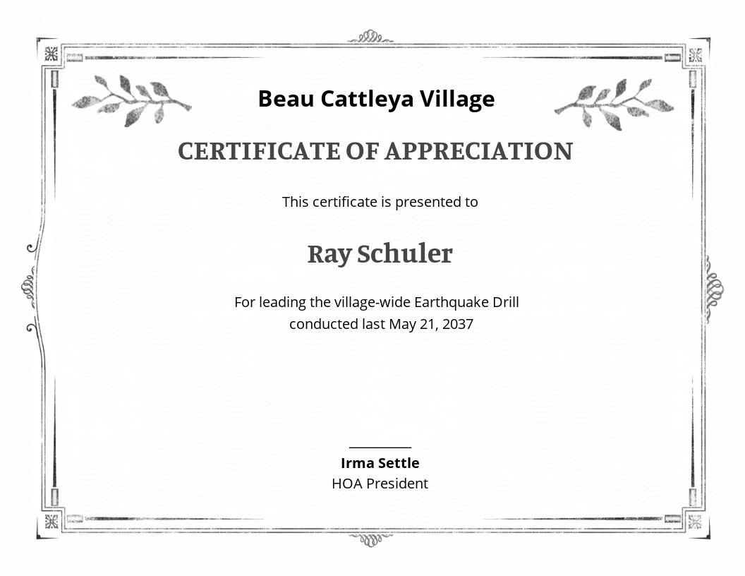 Professional Certification of Appreciation Template