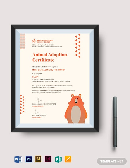 beanie boo adoption certificate template