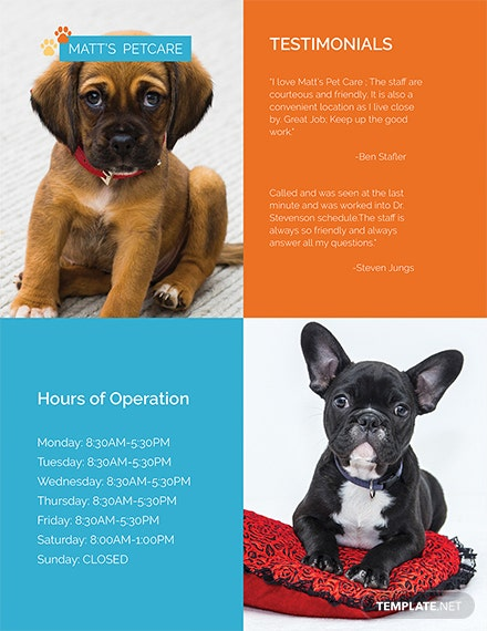 free pet care flyer templates 1x