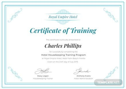 Free Hospital Training Certificate Template in Microsoft ...