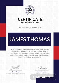 Free art award certificate template in adobe photoshop illustrator free martial arts award certificate template yadclub Choice Image