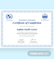 Free Teacher's Training Completion Certificate Template
