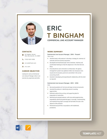 Commercial Line Account Manager Resume Template