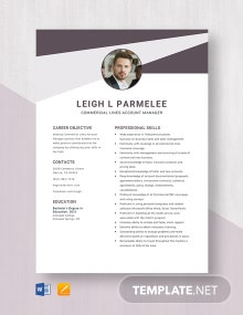 Commercial Lines Account Manager Resume Template