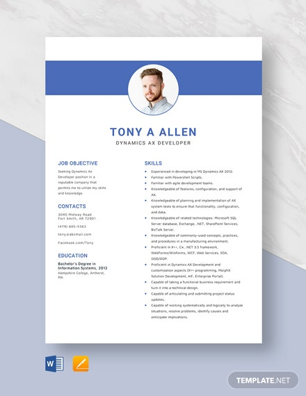 Dynamics Ax Developer Resume Template
