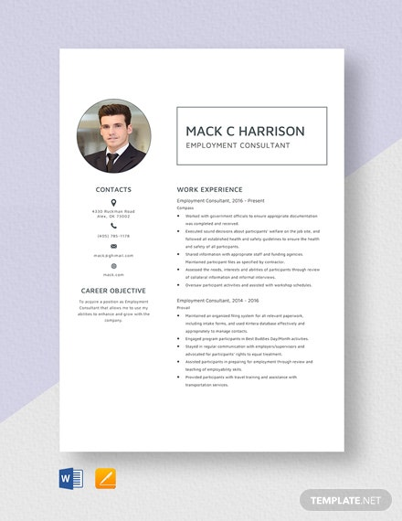 Employment Consultant Resume Template