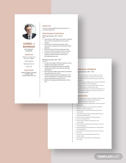 ERP Project Manager Resume Download