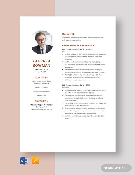 ERP Project Manager Resume Template