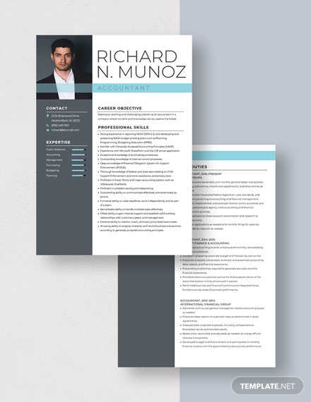 Accountant Resume  Download