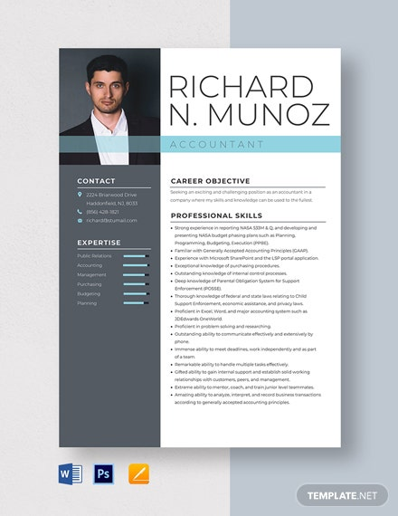 Accountant Resume Template