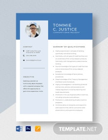 Community Bank President Resume Template