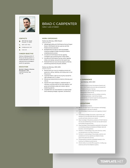 Family Law Attorney Resume Download