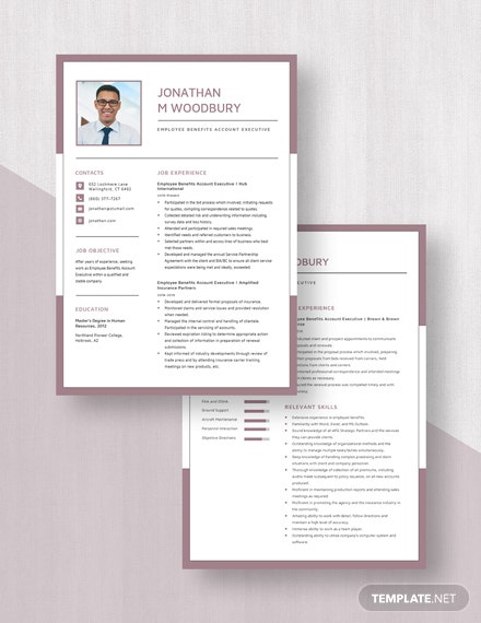 Employee Benefits Account Executive Resume  Download