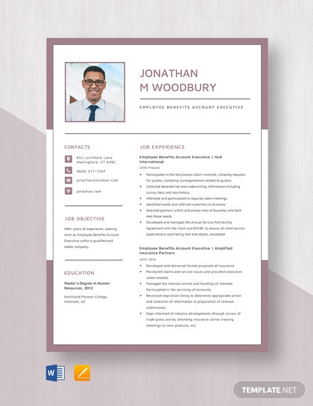 Employee Benefits Account Executive Resume