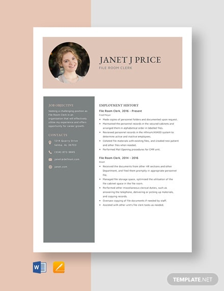File Room Clerk Resume Template