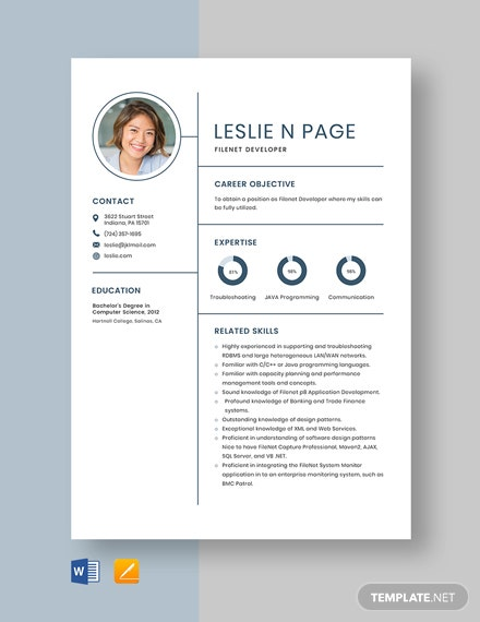 Filenet Developer Resume Template