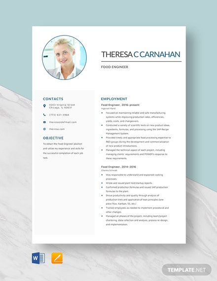 Food Engineer Resume Template
