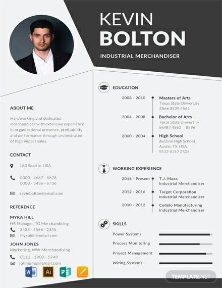 Free Merchandiser Resume Template