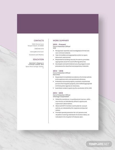 Force Protection Officer Resume  Template