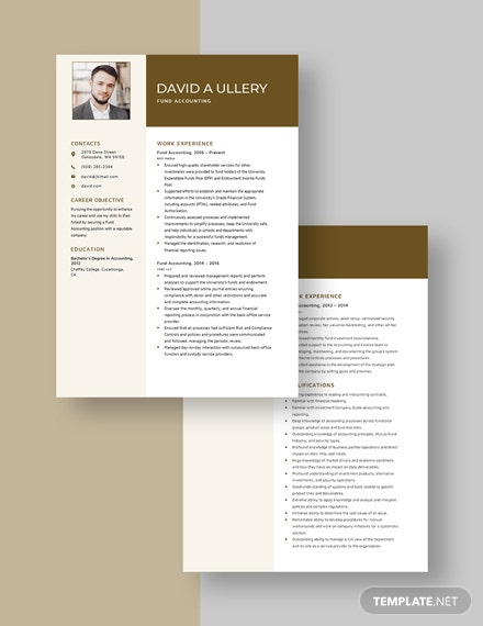 Fund Accounting Resume  Download