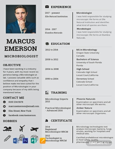 91  free one page resume templates