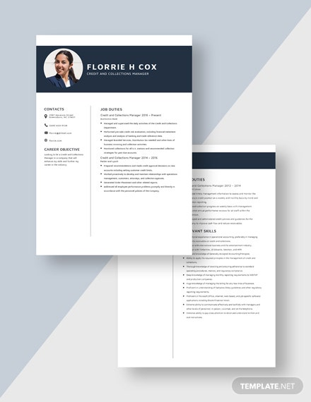 Credit and Collections Manager Resume Download