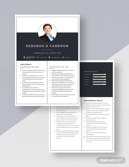 Commercial Director  Resume Download