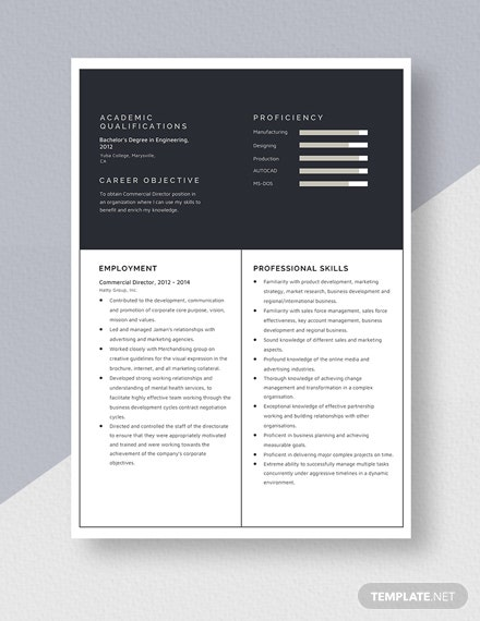 Commercial Director  Resume Template