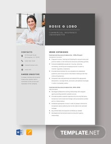 Commercial Insurance Underwriter Resume Template