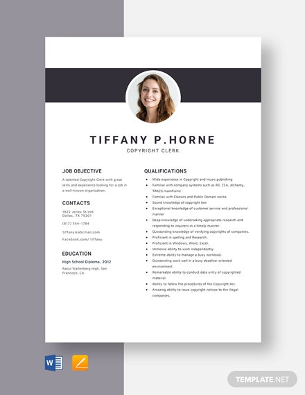 Copyright Clerk Resume Template