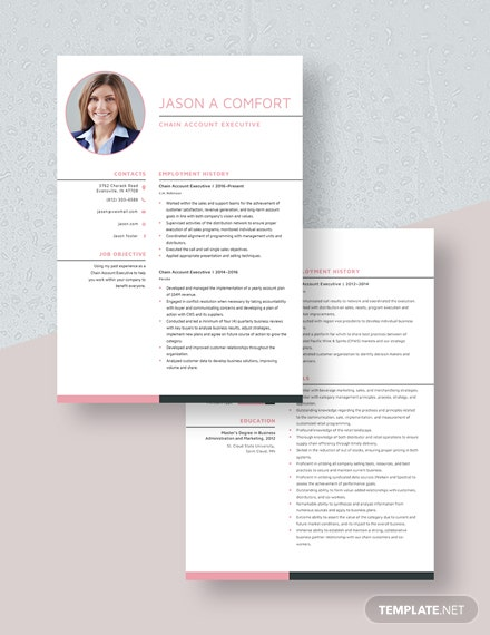 Chain Account Executive Resume  Download