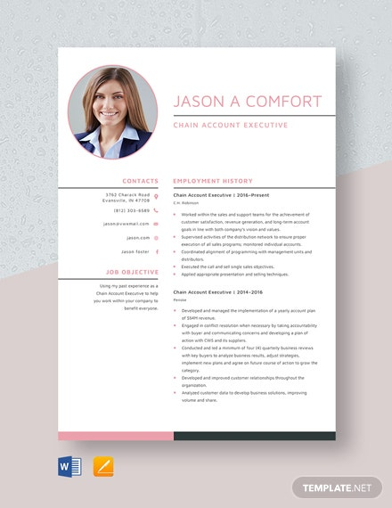 Chain Account Executive Resume