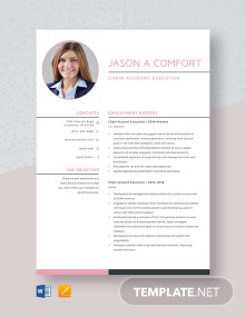 Chain Account Executive Resume Template