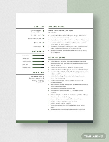 Change Control Manager Resume  Template