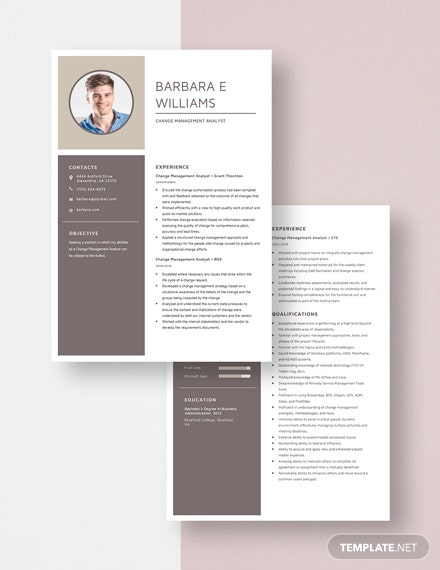 Change Management Analyst Resume  Download
