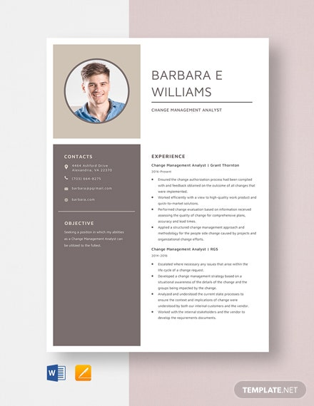 Change Management Analyst Resume Template