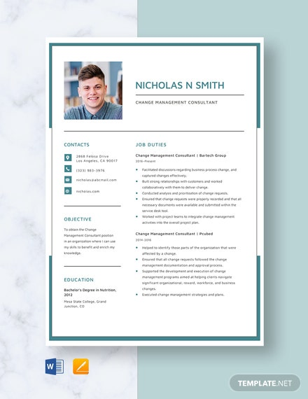 Change Management Consultant Resume Template