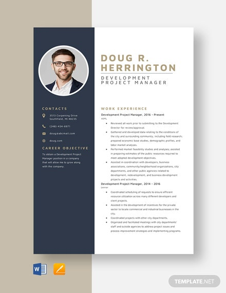 Development Project Manager Resume Template