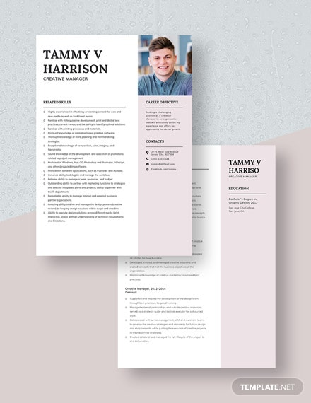 Creative Manager Resume Download