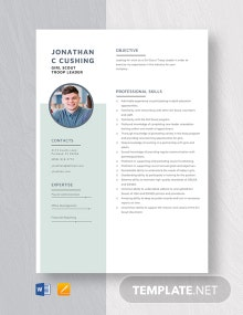 Girl Scout Troop Leader Resume Template