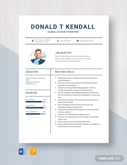 Global Account Director Resume Template