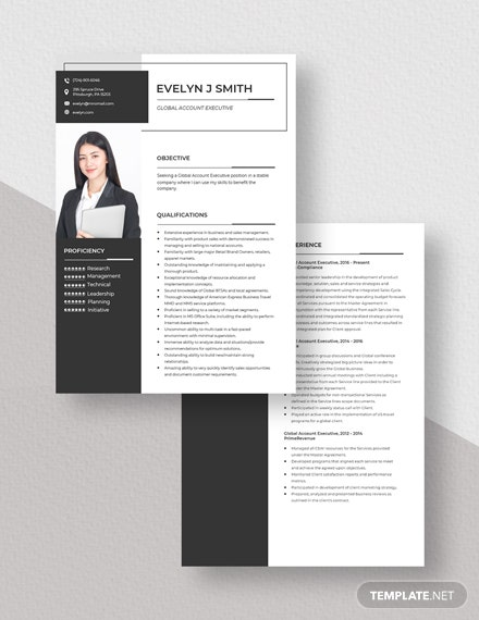 Global Account Executive Resume Download