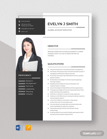 Global Account Executive Resume Template