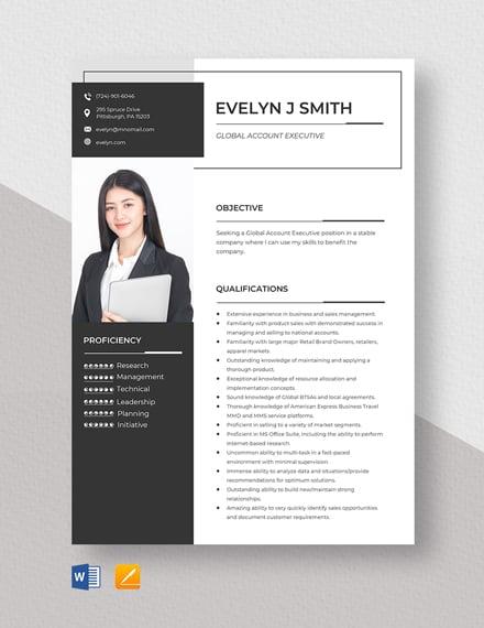 Global Account Executive Resume