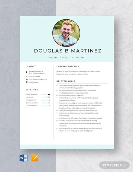 Global Project Manager Resume Template