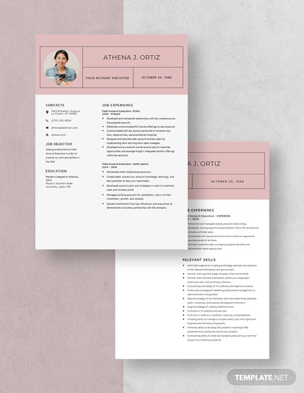 FieAccount Executive Resume Download