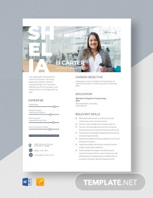 Finance Consultant Resume Template