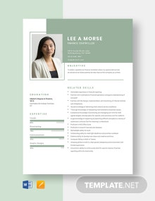 Finance Controller Resume Template